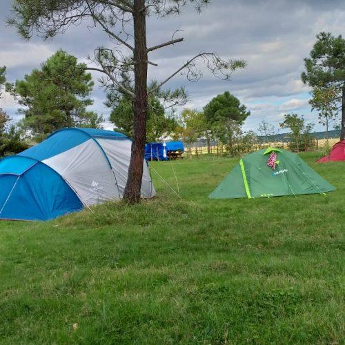 marti-camping