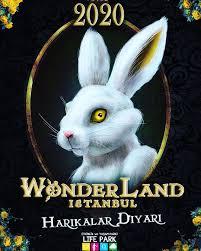 wonderland-festival